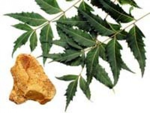 Bevu Bella (Neem leaves and Jaggery)