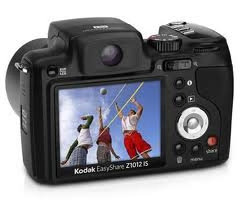 Pretty much everyone has a digital camera now since they are so user friendly. Most even have capability of taking video