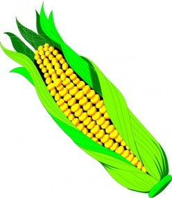 Iowa: Corn, Pigs and... Nuclear Weapons?