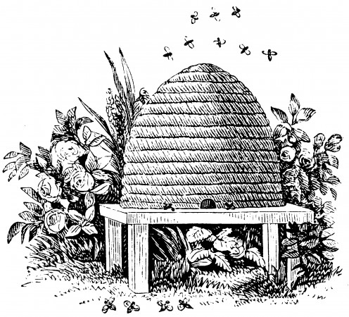 The old fashioned skep