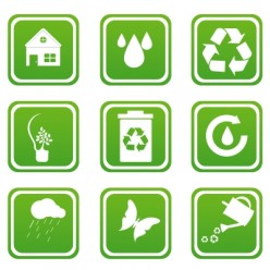 4 Easy Eco-Friendly Changes You Can Make Now