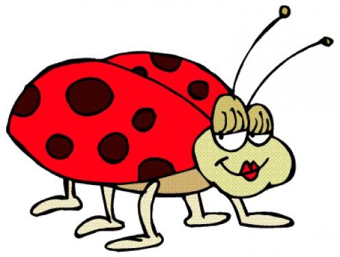 LueAnne The Ladybug