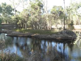 """""""We tried to avoid confrontation so we went to the other side of the park but they came after us and made the trouble. The police always intended to arrest someone and they did,"""" said one of the Aboriginal activists."""