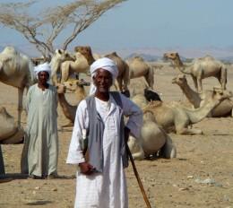 Beja nomads of North Africa.