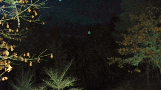 Orbs captured at dusk.