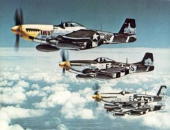 What do you think was the best American Fighter plane of World War II?
