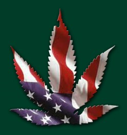 The first American Flag was made from Hemp and the Constitution of the United States as well as the Declaration of Independence was printed on paper made from Hemp, ironic wouldn't you say?