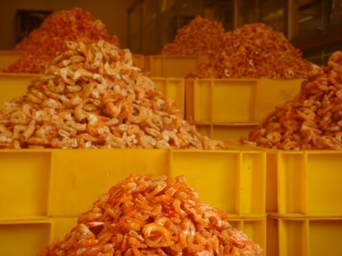Dried Shrimp for Sale