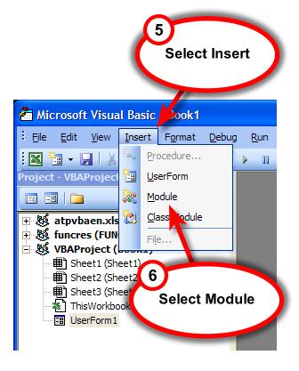 Figure 5. Insert a VBA module