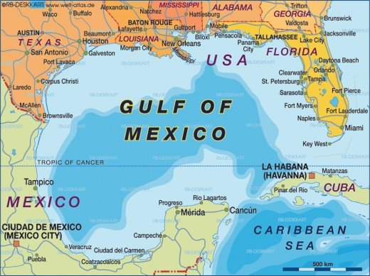Gulf of mexico measuring 700,000 sq. miles is the world's largest gulf. A gulf is a large area of a sea or ocean partially enclosed by land