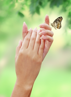 If the butterfly doesn't come to your garden willingly, reach out and convince it to come. Job opportunities do not fall in many people's laps anymore.