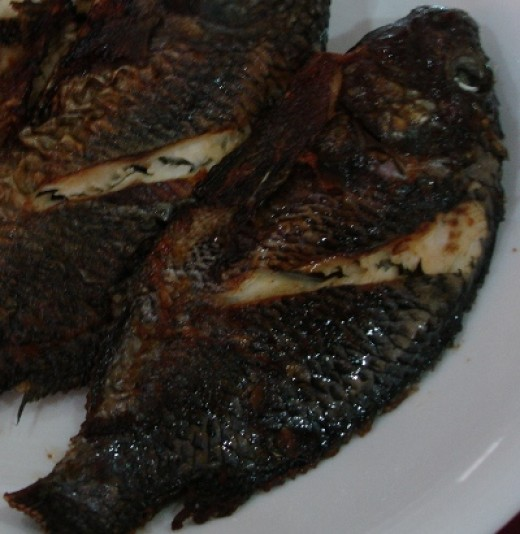 "fried ""tilapia"""