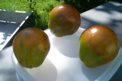 Black Russian Truffle is pear shape, greenish pink outside, dark blood red inside. A tomato heirloom novelty.