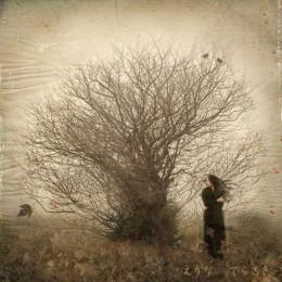 Stillness from JeNn Source: flickr.com