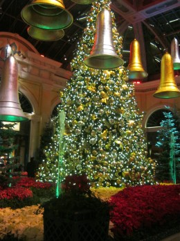 Christmas time at Bellagio Conservatory, simply beautiful!