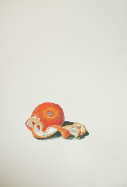 This is one of many colored pencil exercises to do in the Colored Pencil Painting Bible by Alyona Nickelson.