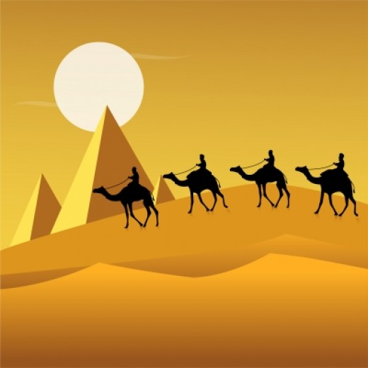 There are over 40 words for Camel in the Arabic language.