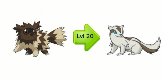 What Level Does Poochyena Evolve Zigzagoon Evolution Ch...
