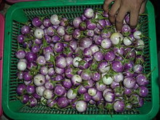 Asian (Thai) Eggplant