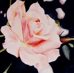A Question of Focus:  Watercolor Floral Paintings Up Close and Personal