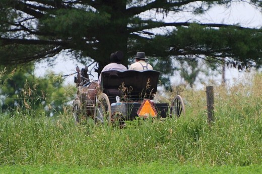 The Amish still use technology dating back to the 17th and 18th century. It's likely that we will revert back to this sort of life, if we lose modern technology.
