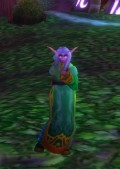 Deese, my Balance Druid at the Lunar Festival in Darnassus, bidding you all a fond farewell! PS All my other toons are Horde.