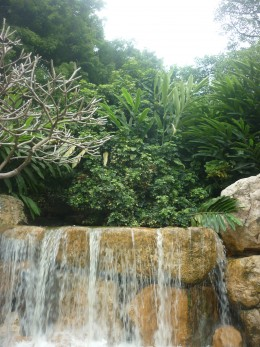 Just as cooling refreshing waters cleanse and refresh the plants so too will Gods love for us.
