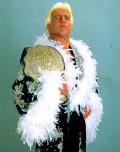 Ric flair as wcw heavyweight champion