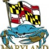 Best Crab Houses in Baltimore Maryland