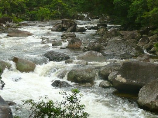 At Mossman Gorge