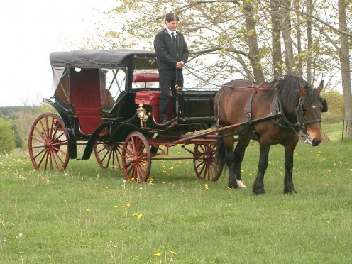 Annie and her wedding carriage.
