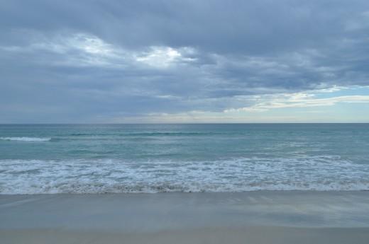 Few weeks back  we celebrated the Cottesloe to Rottnest swim a 20 km epic race across open ocean