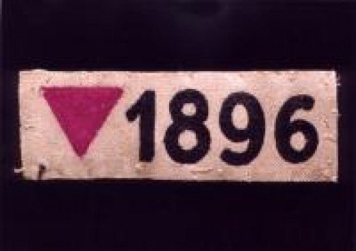 Josef's Pink Triangle and Prison Number