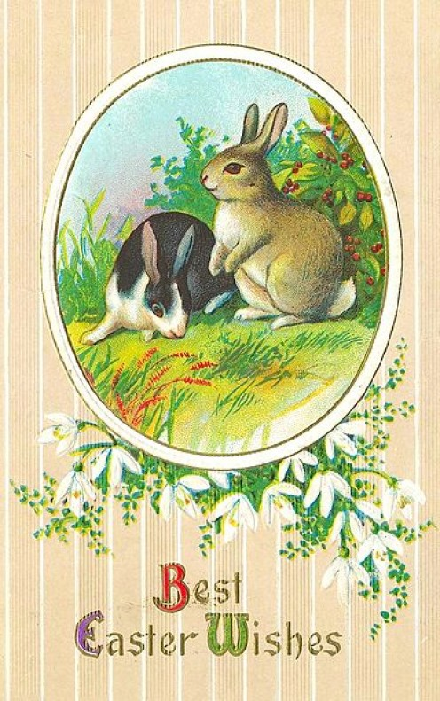 Two bunnies in the grass.  A neat vintage Easter Card.