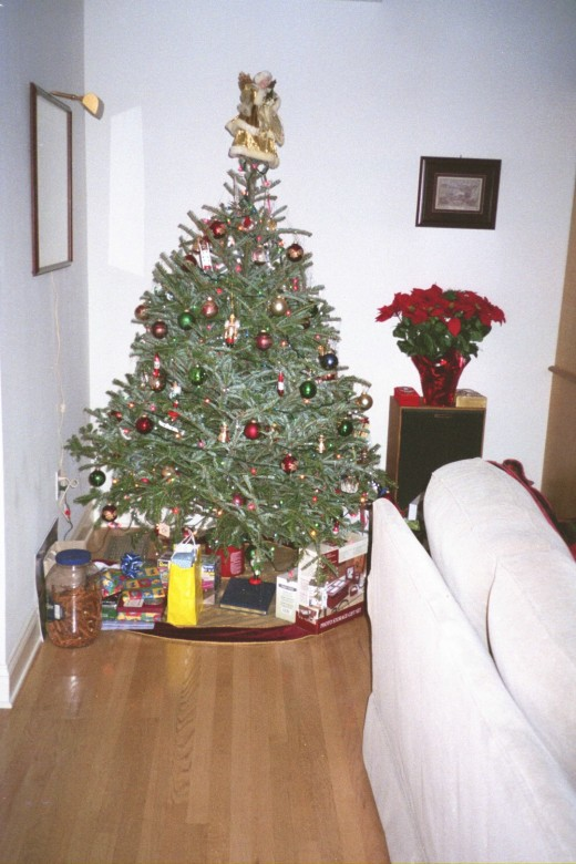 Special Celebration photo of the first Christmas tree we picked out and decorated together.