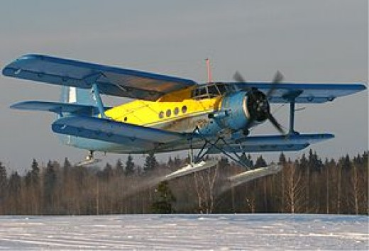 Low aspect ratio biplane, straight wing with large wing area used for sports utility purpose