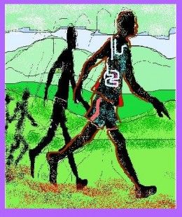In a Marathon, the pros run, the ordinary folk do a fast walk. The objective is to finish so do not strain yourself