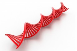 What Are The Benefits of Sequencing the Human Genome Again?