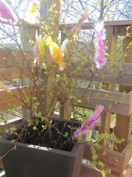 Easter birch twigs!