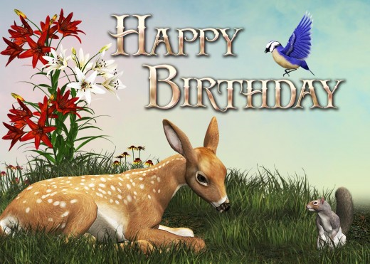 Birthday Card Pictures2 - Animals.
