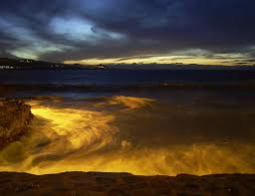 The beauty of the beach at night