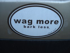 Good advice for dogs and people.