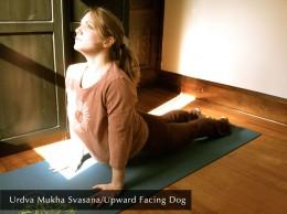 Urdva Mukha Savasana/Upward Facing Dog