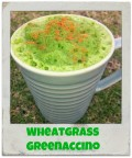 Wheatgrass Benefits - How to Grow  - How to Juice