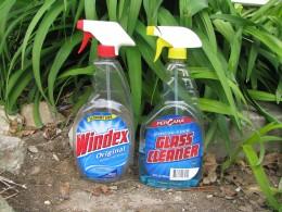 Windex or window cleaner?