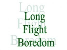 Need ideas during long flights?