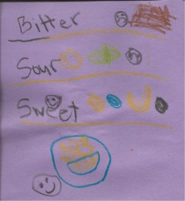 """The """"Taste"""" page from my daughter's Senses Smash Journal - she seperated her drawings by bitter, sour, sweet and salty"""