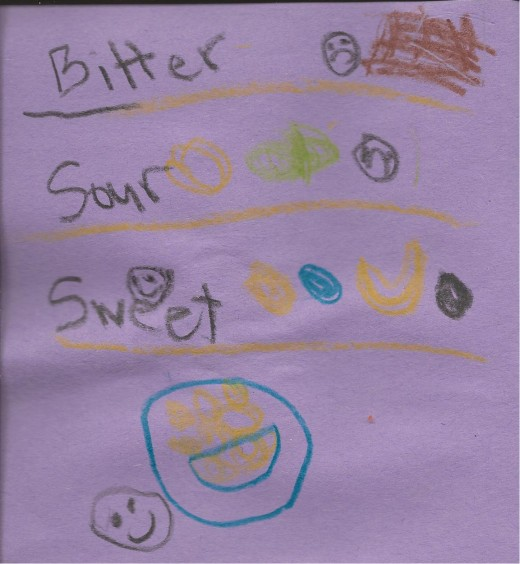 "The ""Taste"" page from my daughter's Senses Smash Journal - she seperated her drawings by bitter, sour, sweet and salty"