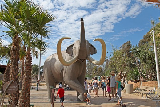 The San Diego Zoo near downtown San Diego