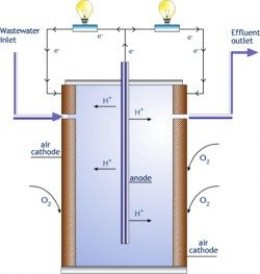 A Microbial Fuel Cell Converts Waste Sewage Water Into Electricity